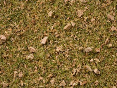 Master-Grasmischung Almwiese, 2,5 bis 6 mm <br/>NOCH 07075