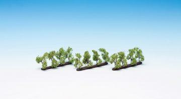 Plantagenbäume <br/>NOCH 21530 2