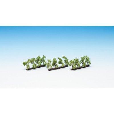Plantagenbäume <br/>NOCH 21535