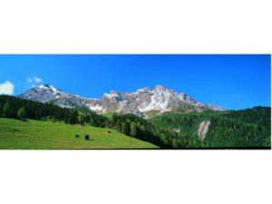 Hintergrundkulisse Alpenvorla <br/>Vollmer 46111