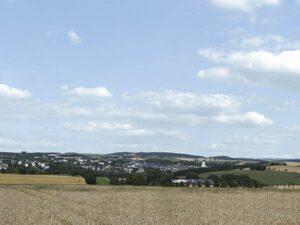 Hintergrund Erzgebirge 2 <br/>Auhagen 42514