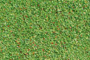 Streumaterial Wiese hellgrün <br/>Auhagen 60822