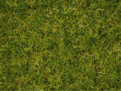 NOCH 07076 <br/>Master-Grasmischung Sommerwiese, 2,5 bis 6 mm