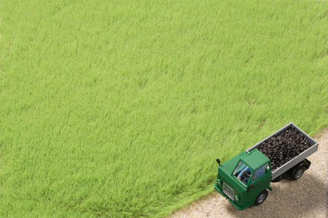 Auhagen 75613 <br/>Grasfasern hellgrün 4,5 mm 1